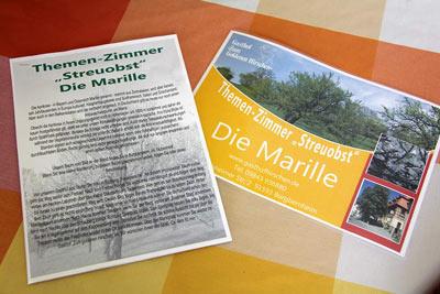 Pension Bad Windsheim, Gashof Zum goldenen Hirschen, Zimmer Marille
